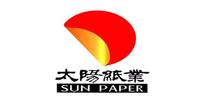 山东太阳纸业